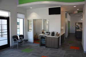 Orthodontics Office in Allen, Texas